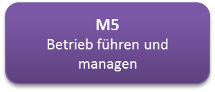 M5.png
