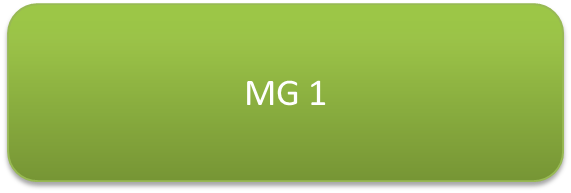 MG1.png