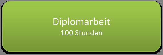 diplomarbeit-100std.png