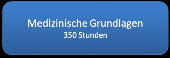 medizinische_grundlagen_350std__572x195.png