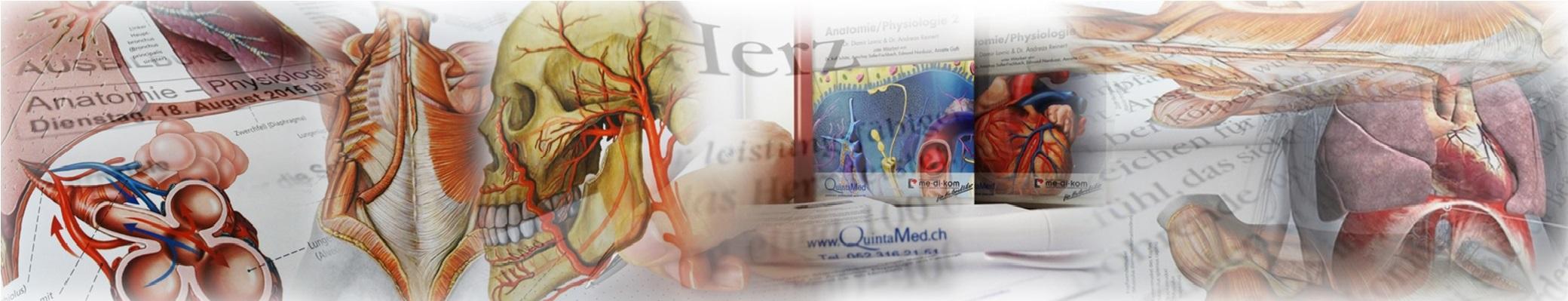 Schulmedizinische Grundlagen